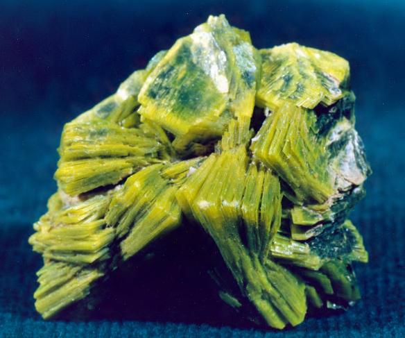 Autunite, Washington. Bureau of Mines, Mineral Specimens C1621