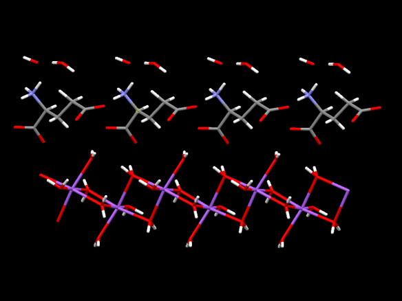 The triple layered structure of MSG pentahydrate. The top layer is water molecules, then the middle layer is the glutamate molecules, and the bottom layer is the complex of water and sodium (purple) atoms.