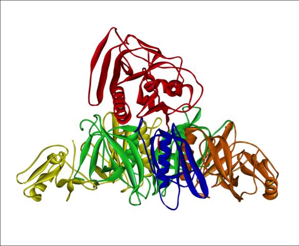 Pertussis toxin from Bordetlla pertussis.