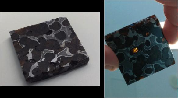 "Figure 3. A section of pallasite meteorite ""Brenham""."