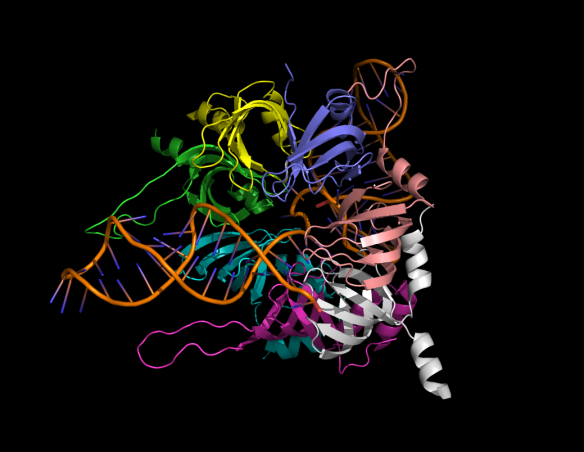 Collins_spliceosome