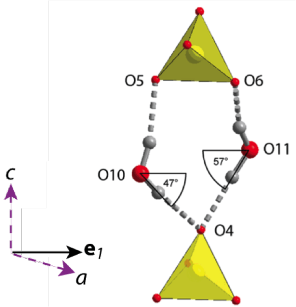 Figure 3. The hydrogen bonds and sulphate tetrahedra which control the behaviour of mirabilite with temperature.