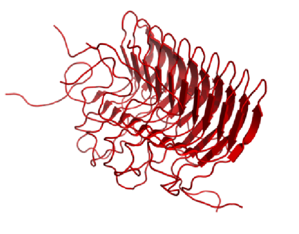 Image generated by Pymol (http://www.pymol.org/) using the coordinates from the protein data bank (accession code: 2RNM).